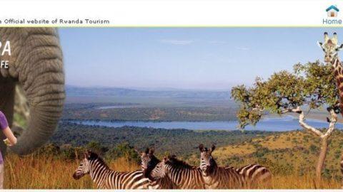 Rejser til Rwanda – Fantastiske naturoplevelser