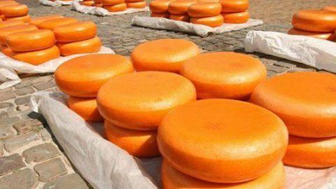 Gouda meget mere end lækker ost?
