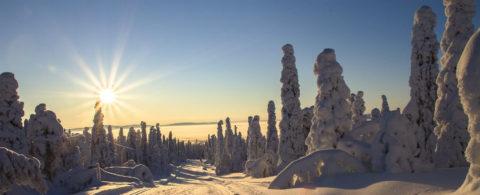 Oplev Laplands storslåede natur