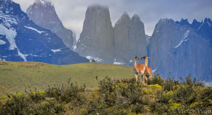 Backpacking i Chile: Torres del Paine, Patagonien