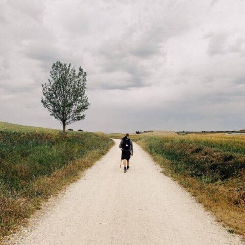 Caminoen – en af de vildeste vandreture i verden